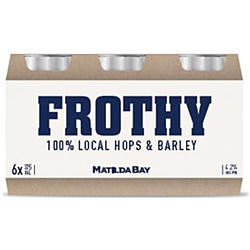 FROTHY 4.2% CANS 375ML 24PK