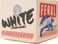 FERAL WHITE 330ML STUBBIES